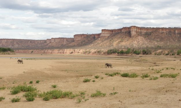 The Humbling of Zim: Our Time in Gonarezhou & The Chilojo Cliffs